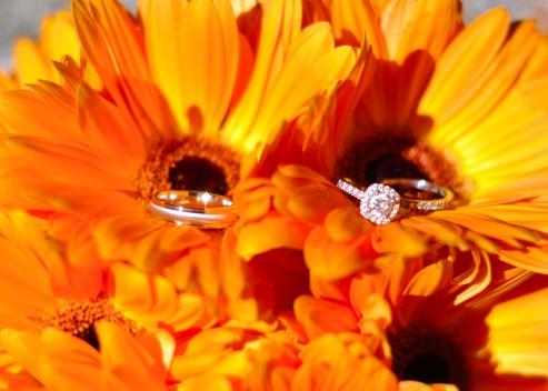 Rings in flower