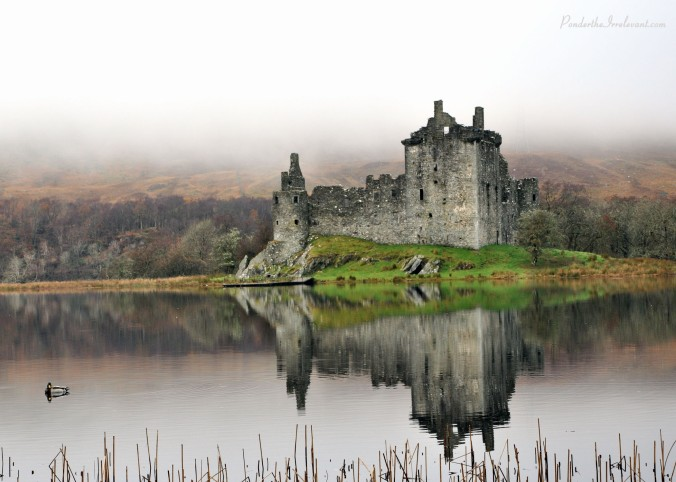Kilchurn, Castle, Scotland, UK, duck