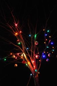 Alabama, Christmas, tree, lights