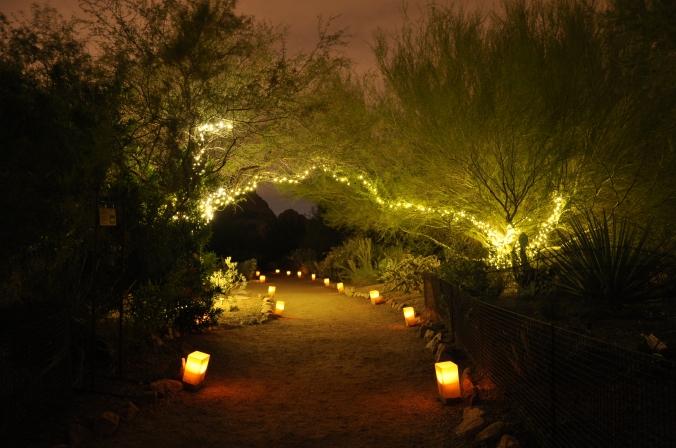 Luminaria, Phoenix, Arizona