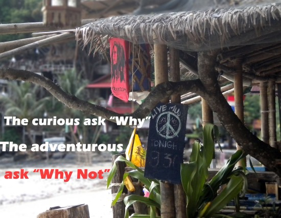 Why not, why, question, thailand, bar
