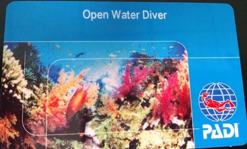 scuba, diving, diver, certification, open water