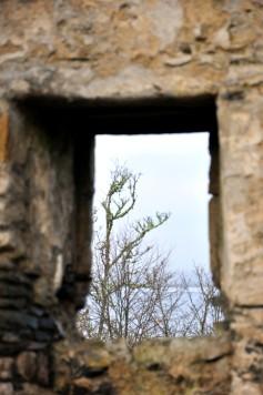 window, castle, scotland
