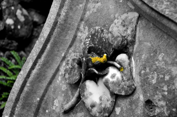 tombstone with flower, black and white
