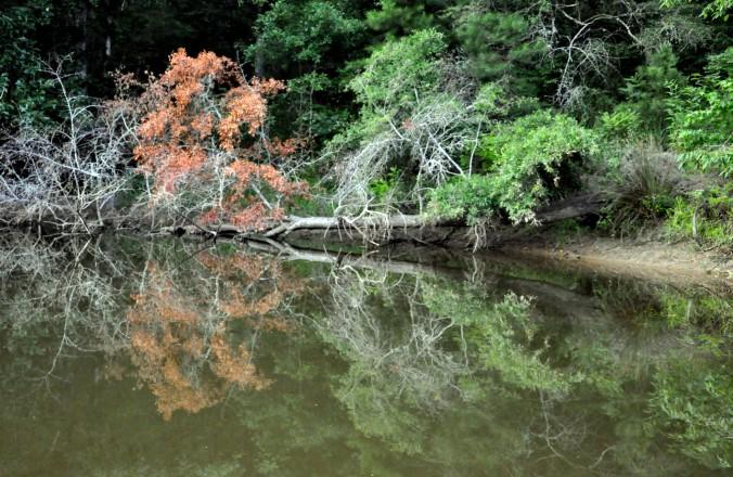 Lake Eufaula, Alabama