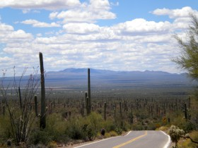 Tucson, Saguaro National Park