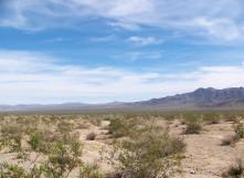 Desert horizon, Joshua Tree National Park, California