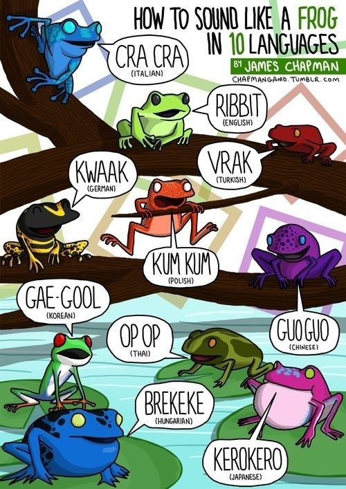 how to speak frog in different languages