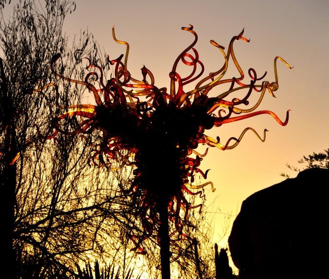 chihuly, desert botanical garden, phoenix, arizona