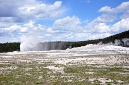 Yellowstone National Park Old Faithful geyser