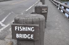 Yellowstone National Park, Fishing Bridge