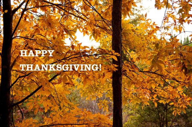 happy thanksgiving, fall leaves