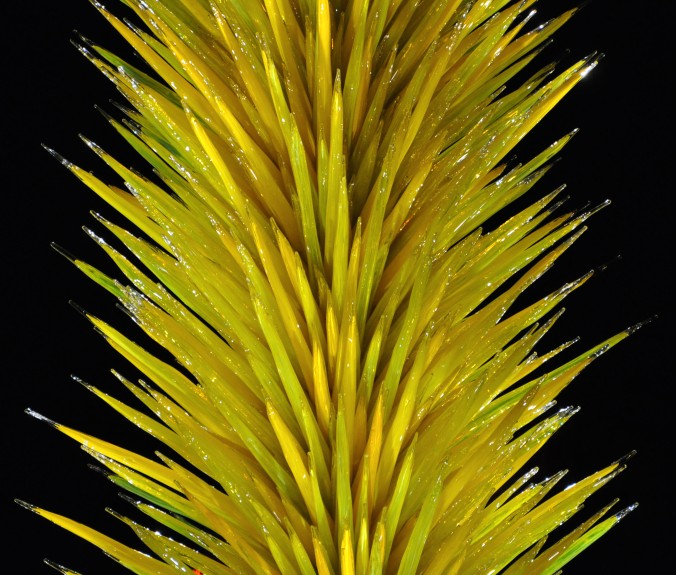 Yellow Chihuly glass