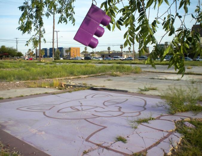 lego cat photo Phoenix Arizona