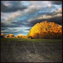 sunset over Alabama field