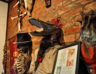 New Orleans Louisiana Voodoo Museum
