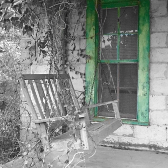 Black and white, vine covered swing