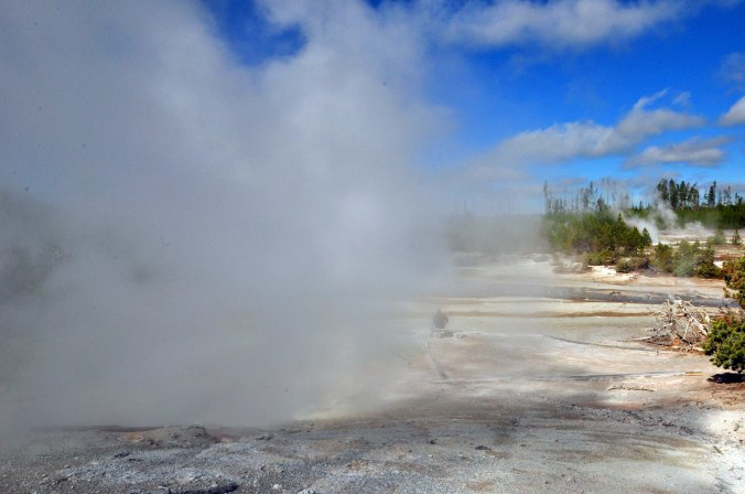 Yellowstone National Park, geyser, steam