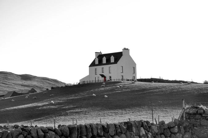 black and white, Isle of Islay, Scotland, UK