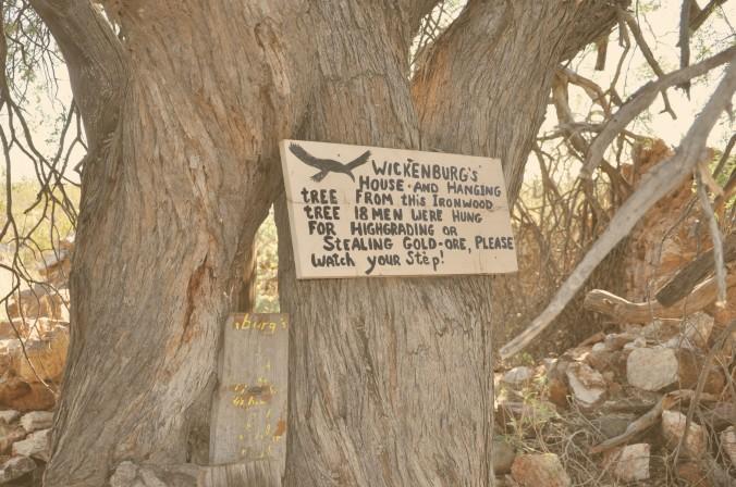 Wickenburg Hanging Tree, Arizona
