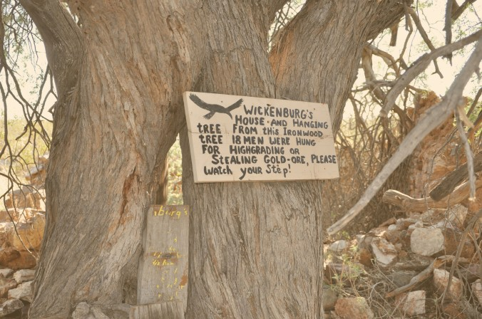 Wickenburg Hanging Tree, Arizona