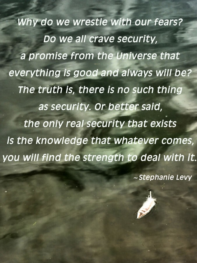 Stephanie Levy security quote