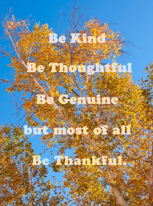 thanksgiving, thankful quote