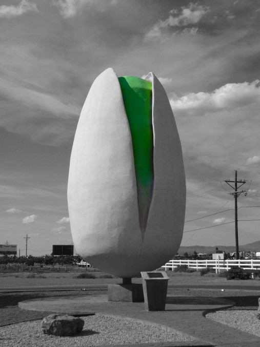 world's largest pistachio nut, New Mexico