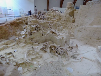 Mammoth Site, South Dakota, archaeology