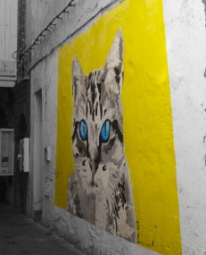 Morocco cat street art