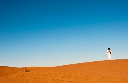 Morocco cat in desert sand